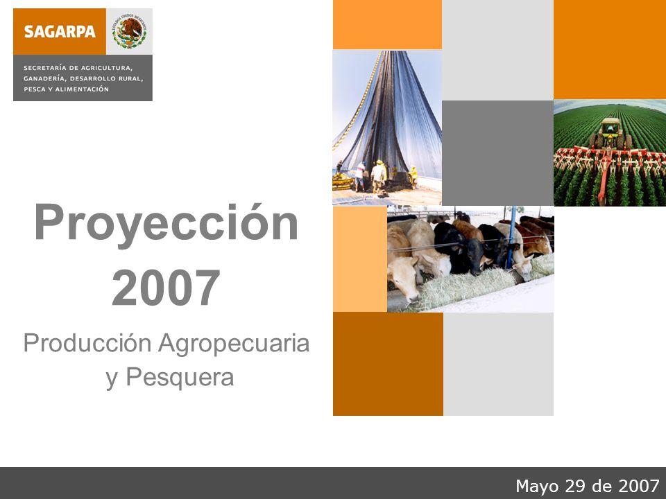 Mayo 29 de 2007 Proyección 2007 Producción Agropecuaria y Pesquera