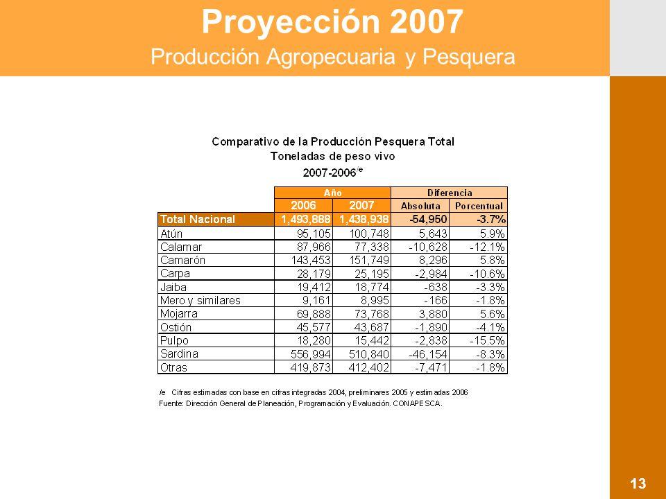 Proyección 2007 Producción Agropecuaria y Pesquera 13
