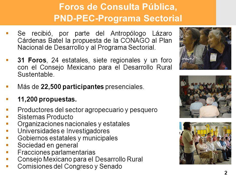 Foros de Consulta Pública, PND-PEC-Programa Sectorial Se recibió, por parte del Antropólogo Lázaro Cárdenas Batel la propuesta de la CONAGO al Plan Na