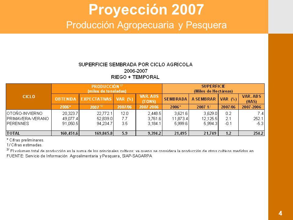 Proyección 2007 Producción Agropecuaria y Pesquera 5