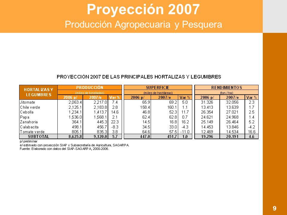 Proyección 2007 Producción Agropecuaria y Pesquera 10