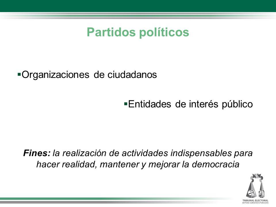 Organizaciones de ciudadanos Fines: la realización de actividades indispensables para hacer realidad, mantener y mejorar la democracia Entidades de interés público Partidos políticos