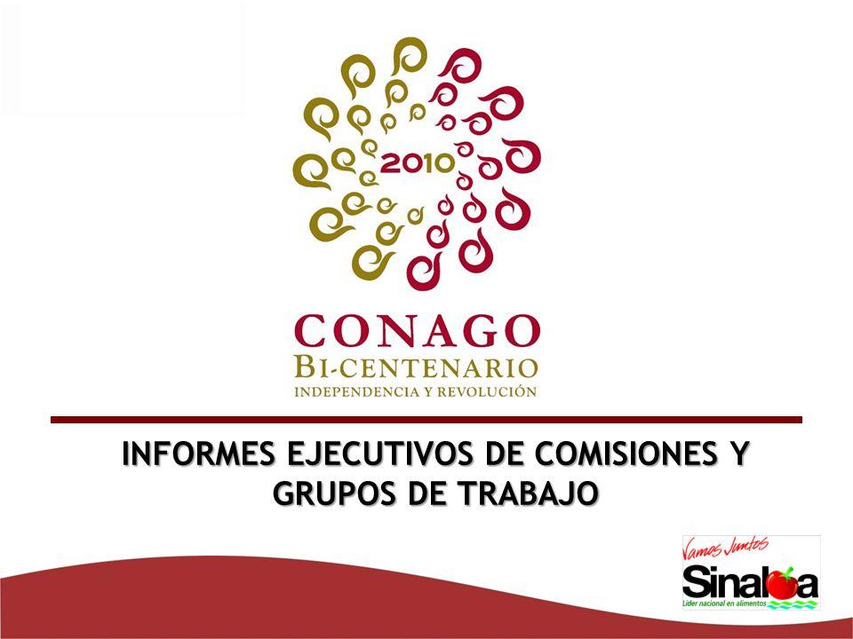 INFORMES EJECUTIVOS DE COMISIONES Y GRUPOS DE TRABAJO