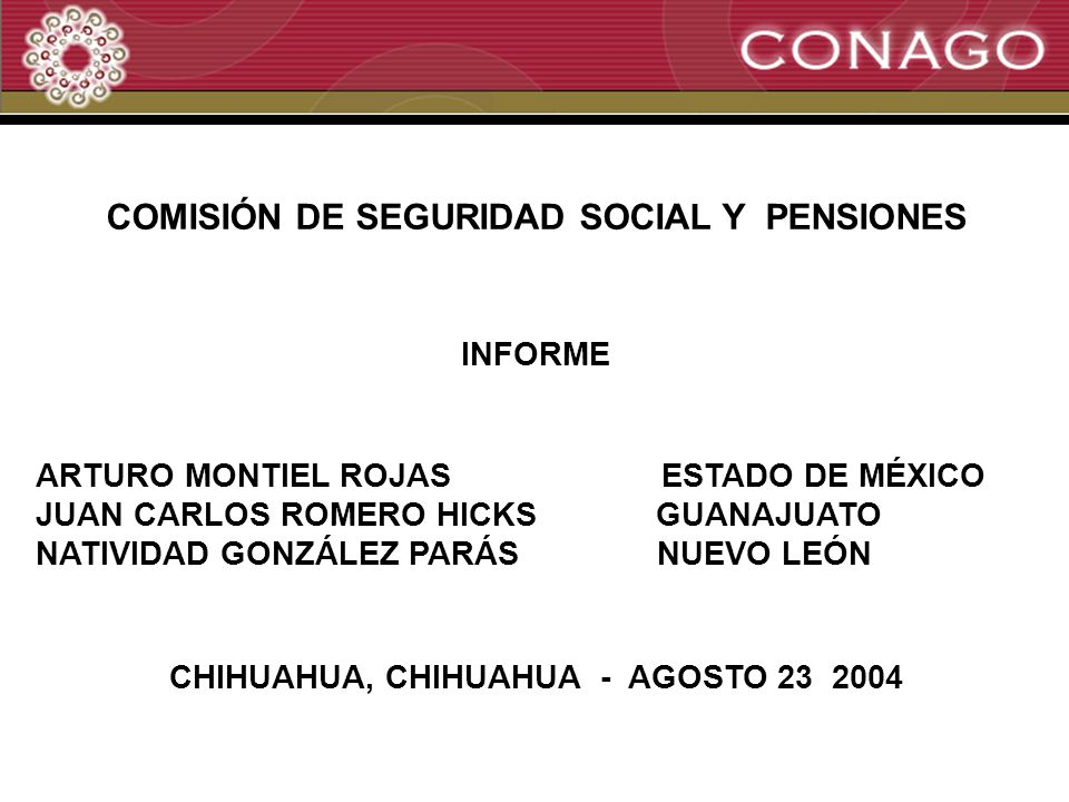 1 COMISIÓN DE SEGURIDAD SOCIAL Y PENSIONES INFORME ARTURO MONTIEL ROJAS ESTADO DE MÉXICO JUAN CARLOS ROMERO HICKS GUANAJUATO NATIVIDAD GONZÁLEZ PARÁS NUEVO LEÓN CHIHUAHUA, CHIHUAHUA - AGOSTO 23 2004