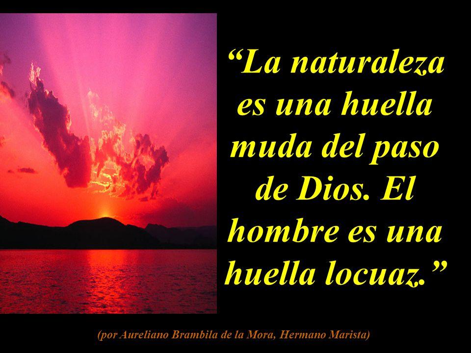 La naturaleza es una huella muda del paso de Dios.