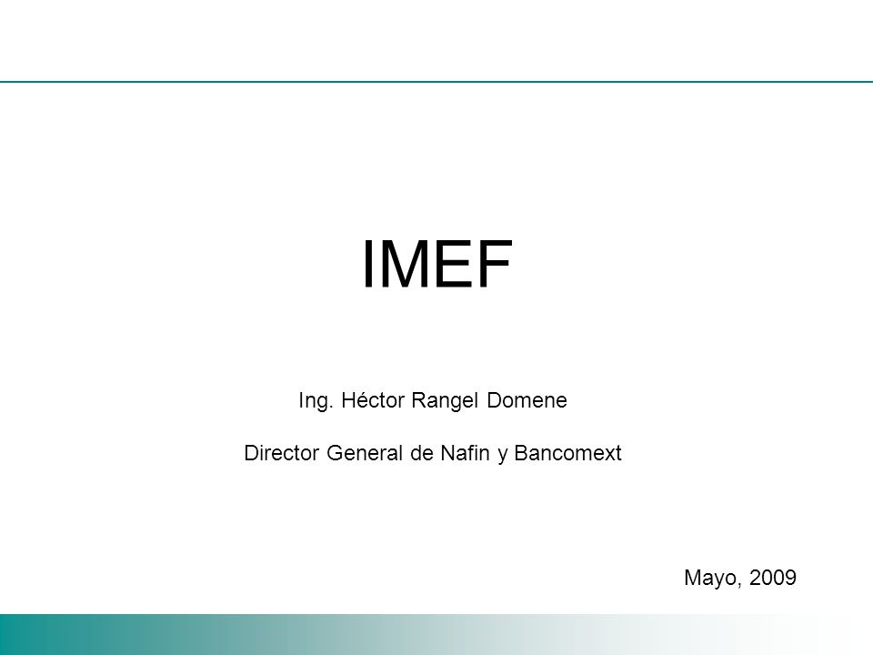 IMEF Ing. Héctor Rangel Domene Director General de Nafin y Bancomext Mayo, 2009