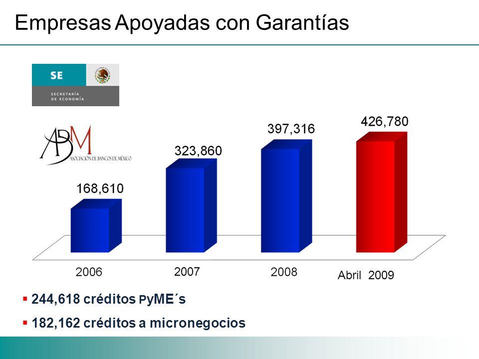 Empresas Apoyadas con Garantías 244,618 créditos P yME´s 182,162 créditos a micronegocios 2007 Abril 2009