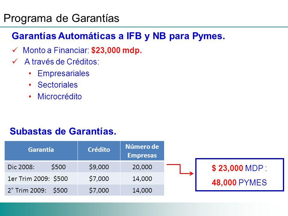 Programa de Garantías Garantías Automáticas a IFB y NB para Pymes.