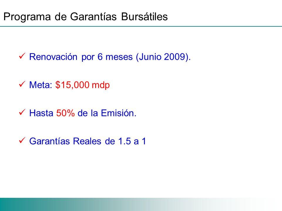 Programa de Garantías Bursátiles Renovación por 6 meses (Junio 2009).