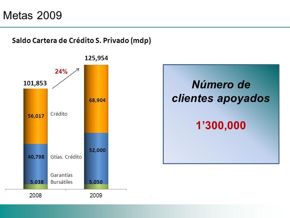 Metas 2009 24% Saldo Cartera de Crédito S.