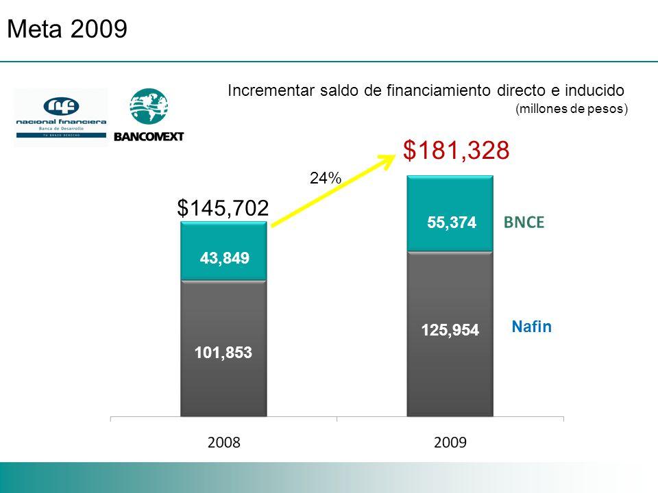 $181,328 101,853 43,849 125,954 55,374 Nafin $145,702 24% (millones de pesos) Meta 2009 Incrementar saldo de financiamiento directo e inducido