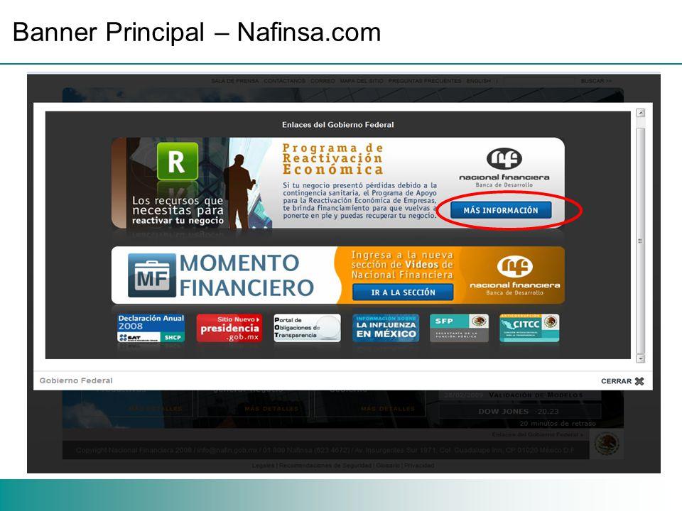 Banner Principal – Nafinsa.com