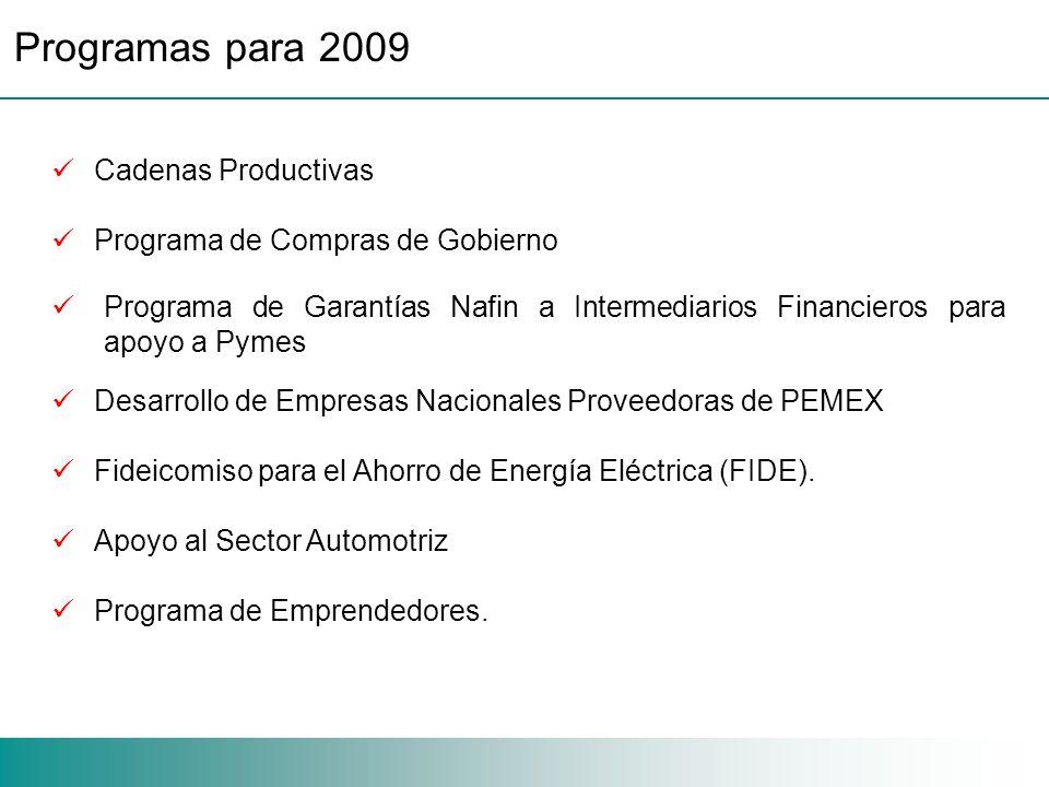 Cadenas Productivas Programa de Compras de Gobierno Programa de Garantías Nafin a Intermediarios Financieros para apoyo a Pymes Desarrollo de Empresas Nacionales Proveedoras de PEMEX Fideicomiso para el Ahorro de Energía Eléctrica (FIDE).