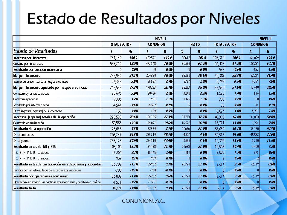 CONUNION, A.C. Estado de Resultados por Niveles