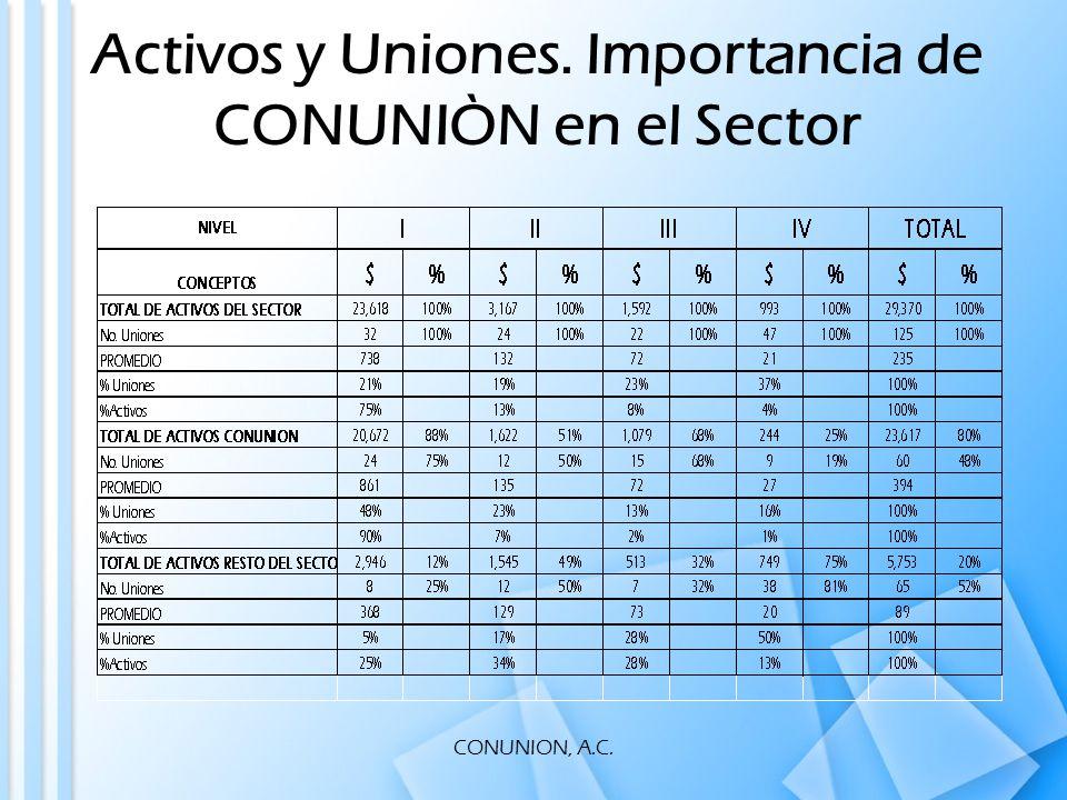 CONUNION, A.C. Activos y Uniones. Importancia de CONUNIÒN en el Sector
