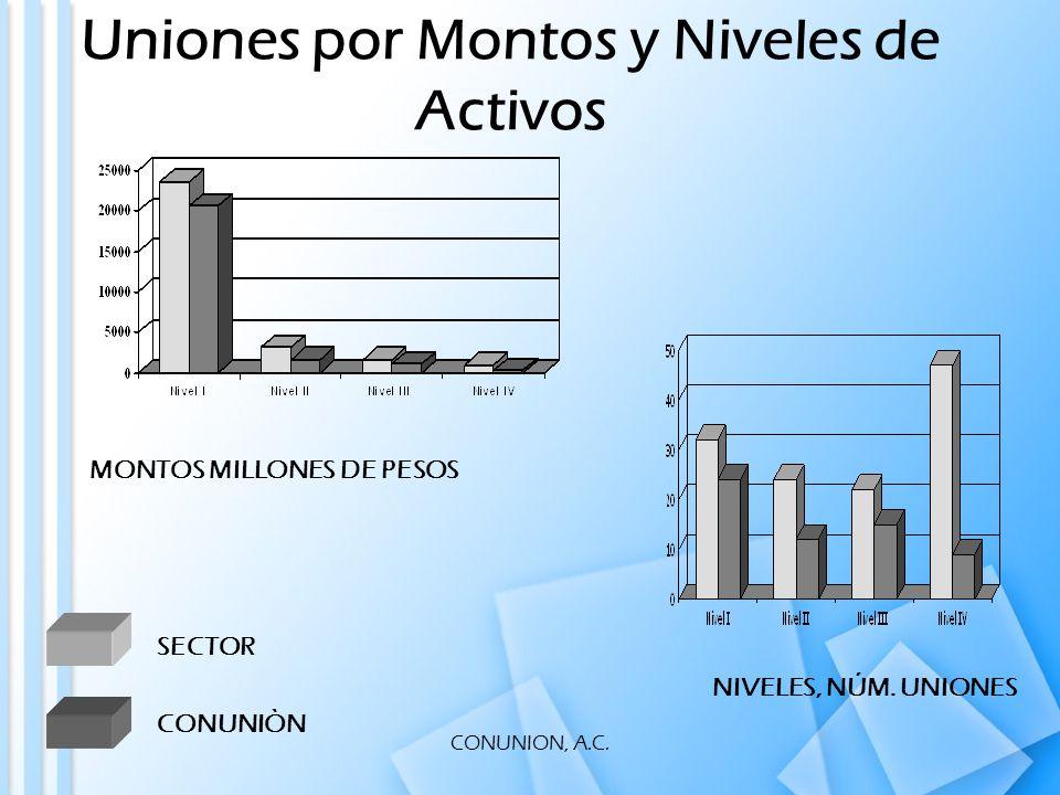 CONUNION, A.C. Uniones por Montos y Niveles de Activos CONUNIÒN NIVELES, NÚM.
