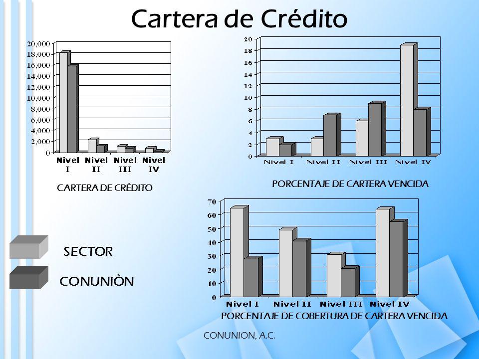 CONUNION, A.C. CARTERA DE CRÉDITO PORCENTAJE DE CARTERA VENCIDA PORCENTAJE DE COBERTURA DE CARTERA VENCIDA Cartera de Crédito SECTOR CONUNIÒN