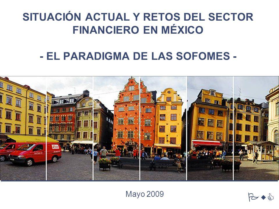 SITUACIÓN ACTUAL Y RETOS DEL SECTOR FINANCIERO EN MÉXICO - EL PARADIGMA DE LAS SOFOMES - Mayo 2009 PwC