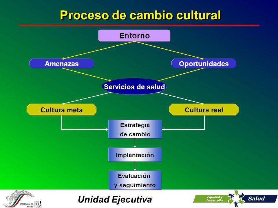 Unidad Ejecutiva Entorno Servicios de salud Cultura realCultura meta OportunidadesAmenazas Estrategia de cambio Implantación Evaluación y seguimiento Proceso de cambio cultural