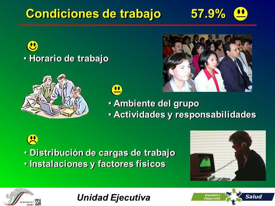 Unidad Ejecutiva Horario de trabajo Condiciones de trabajo57.9% Ambiente del grupo Actividades y responsabilidades Ambiente del grupo Actividades y re