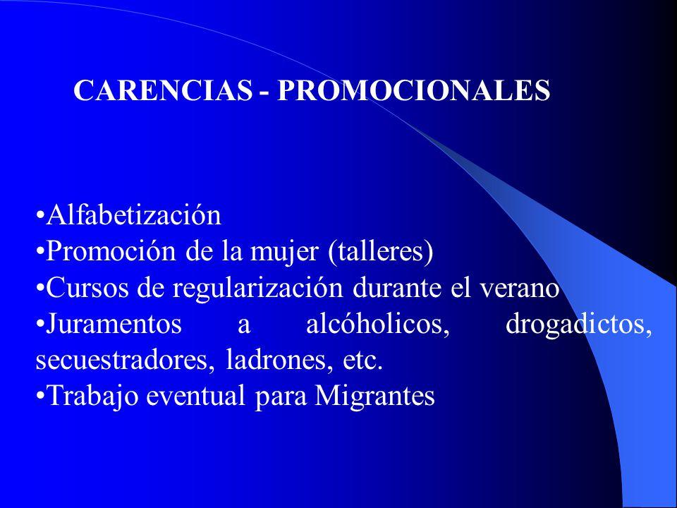 CARENCIAS - PROMOCIONALES Alfabetización Promoción de la mujer (talleres) Cursos de regularización durante el verano Juramentos a alcóholicos, drogadictos, secuestradores, ladrones, etc.