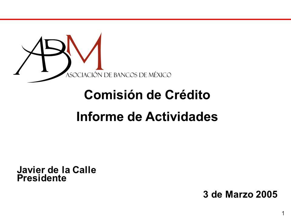 1 Comisión de Crédito Informe de Actividades Javier de la Calle Presidente 3 de Marzo 2005
