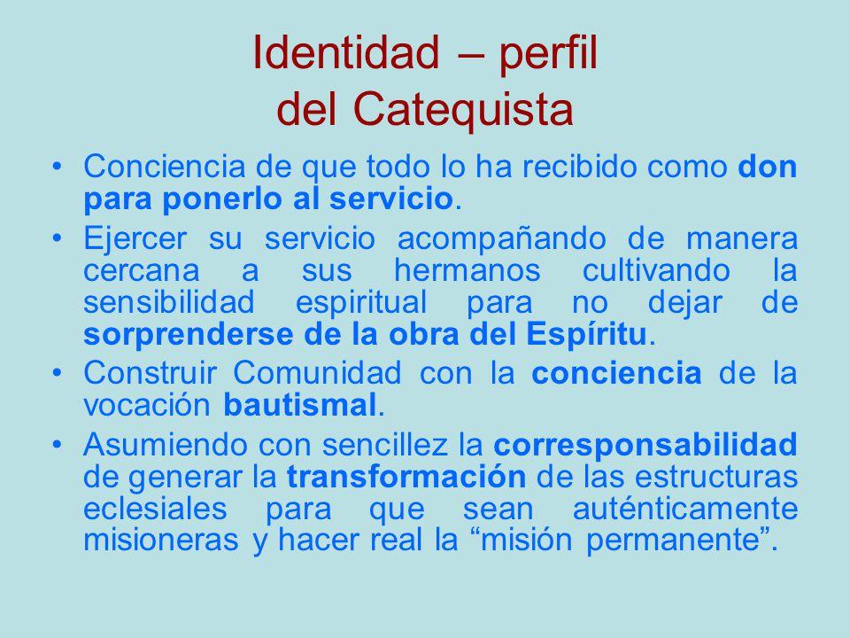 Identidad – perfil del Catequista Conciencia de que todo lo ha recibido como don para ponerlo al servicio. Ejercer su servicio acompañando de manera c