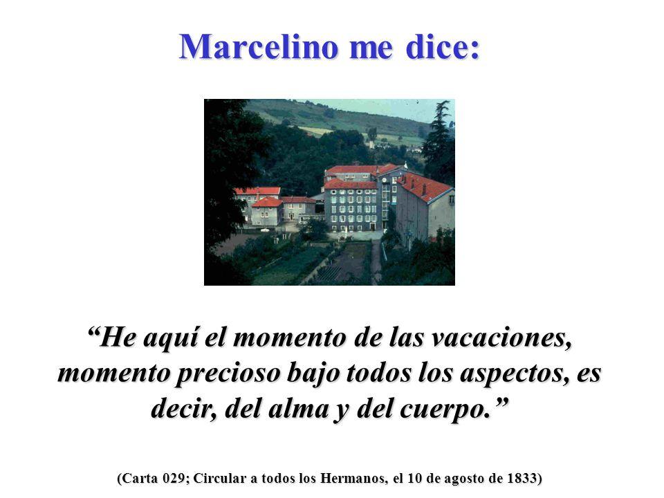 (Carta 029; Circular a todos los Hermanos, el 10 de agosto de 1833) Deseo que Jesús y María sean siempre su único tesoro.