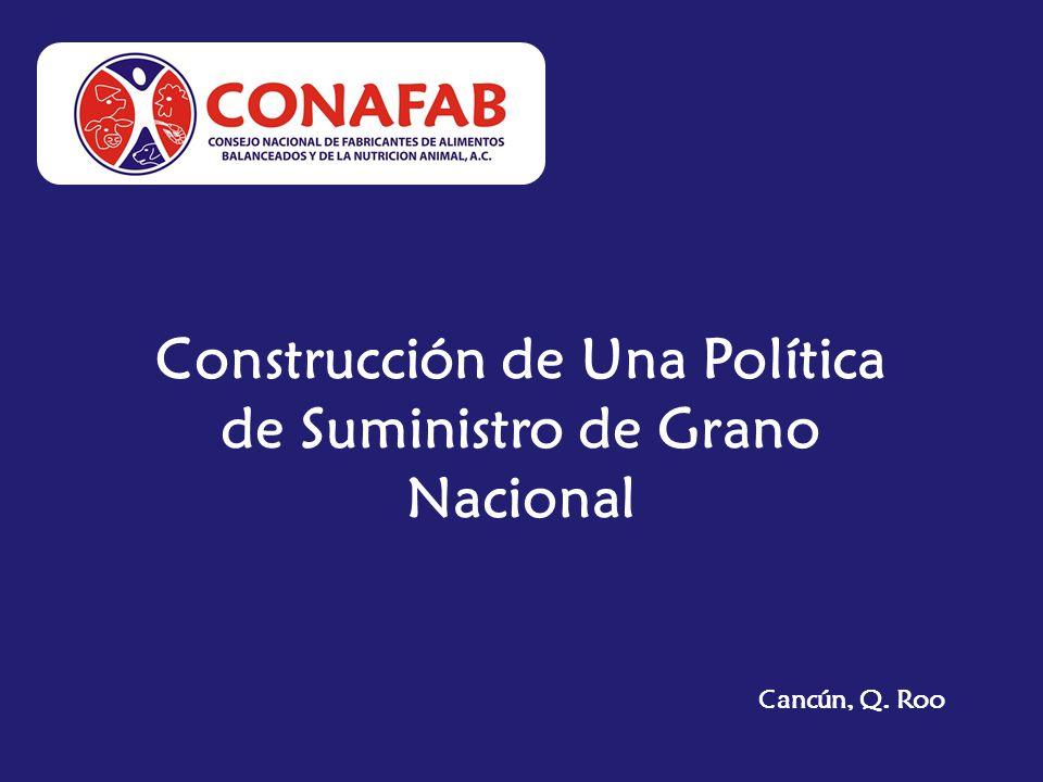 Construcción de Una Política de Suministro de Grano Nacional Cancún, Q. Roo