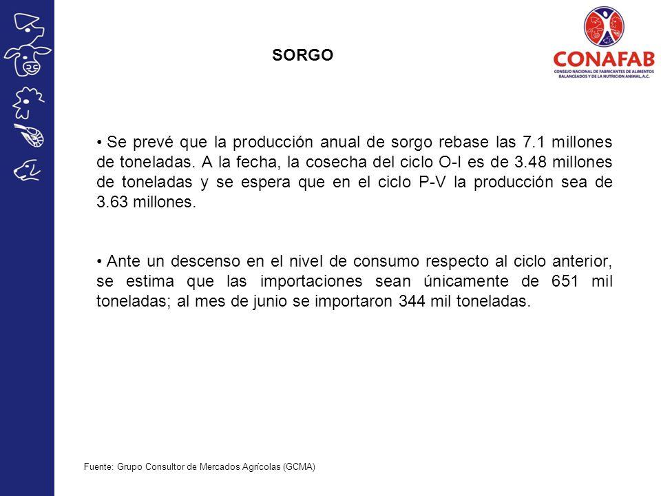 SORGO Se prevé que la producción anual de sorgo rebase las 7.1 millones de toneladas. A la fecha, la cosecha del ciclo O-I es de 3.48 millones de tone