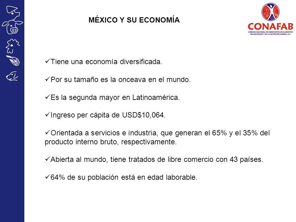MÉXICO Y SU ECONOMÍA Tiene una economía diversificada. Por su tamaño es la onceava en el mundo. Es la segunda mayor en Latinoamérica. Ingreso per cápi