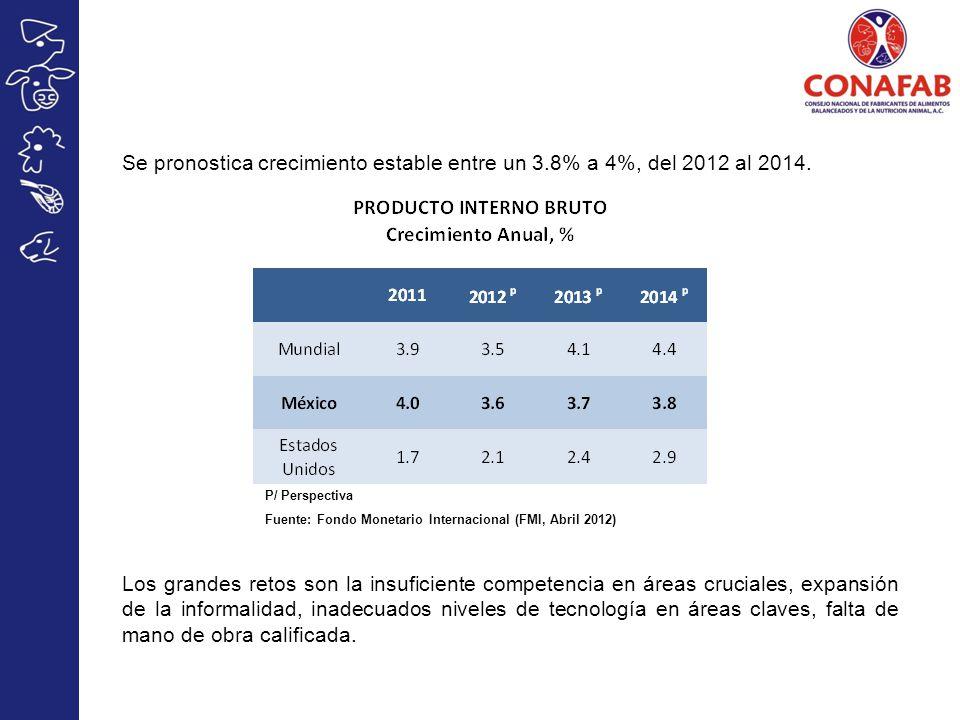 Se pronostica crecimiento estable entre un 3.8% a 4%, del 2012 al 2014. Los grandes retos son la insuficiente competencia en áreas cruciales, expansió