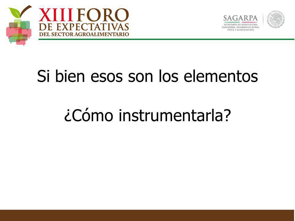 Si bien esos son los elementos ¿Cómo instrumentarla?