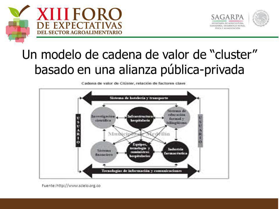 Un modelo de cadena de valor de cluster basado en una alianza pública-privada Fuente: http://www.scielo.org.co