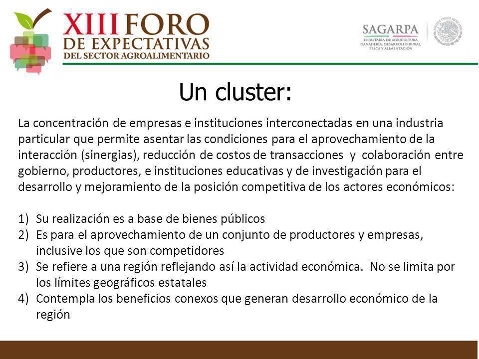 Un cluster: La concentración de empresas e instituciones interconectadas en una industria particular que permite asentar las condiciones para el aprov