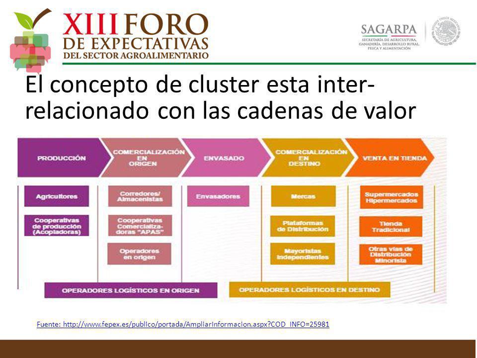 El concepto de cluster esta inter- relacionado con las cadenas de valor Fuente: http://www.fepex.es/publico/portada/AmpliarInformacion.aspx?COD_INFO=2