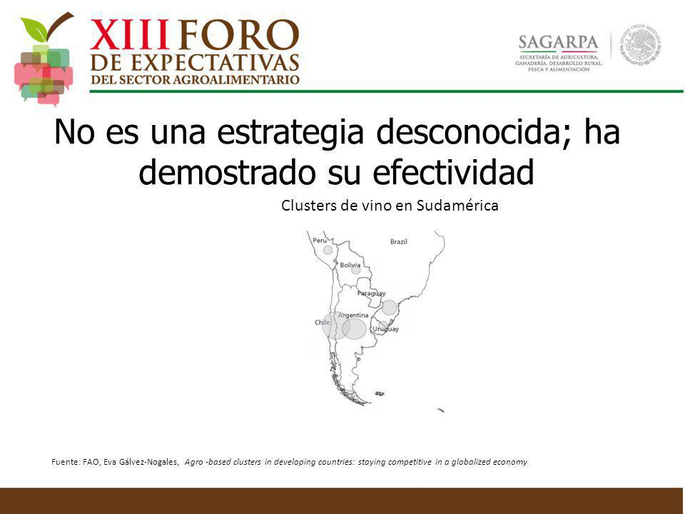 Clusters de vino en Sudamérica Fuente: FAO, Eva Gálvez-Nogales, Agro -based clusters in developing countries: staying competitive in a globalized econ