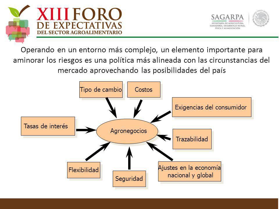Tipo de cambio Flexibilidad Costos Trazabilidad Tasas de interés Exigencias del consumidor Ajustes en la economía nacional y global Ajustes en la econ