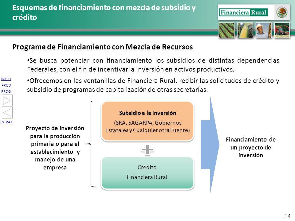 INICIO PROG PROD ESTRAT Financiamiento de un proyecto de inversión Proyecto de inversión para la producción primaria o para el establecimiento y manej