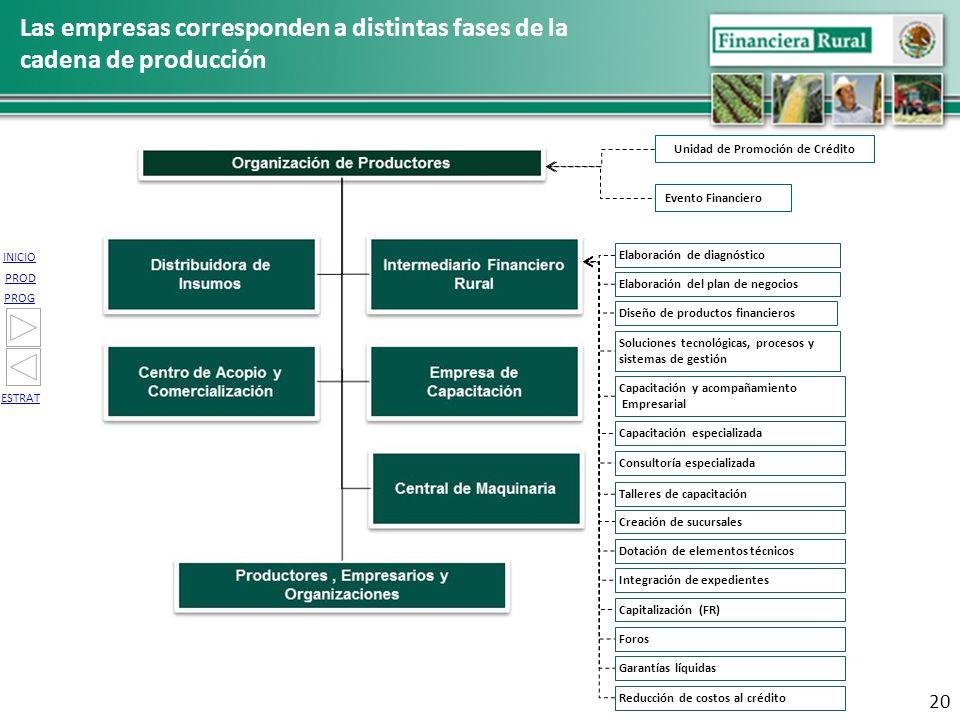 INICIO PROG PROD ESTRAT 20 Las empresas corresponden a distintas fases de la cadena de producción Talleres de capacitación Dotación de elementos técni