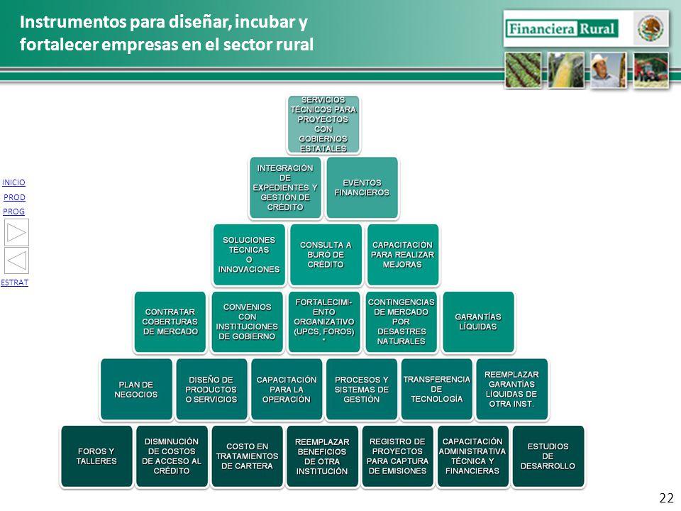 INICIO PROG PROD ESTRAT Instrumentos para diseñar, incubar y fortalecer empresas en el sector rural 22