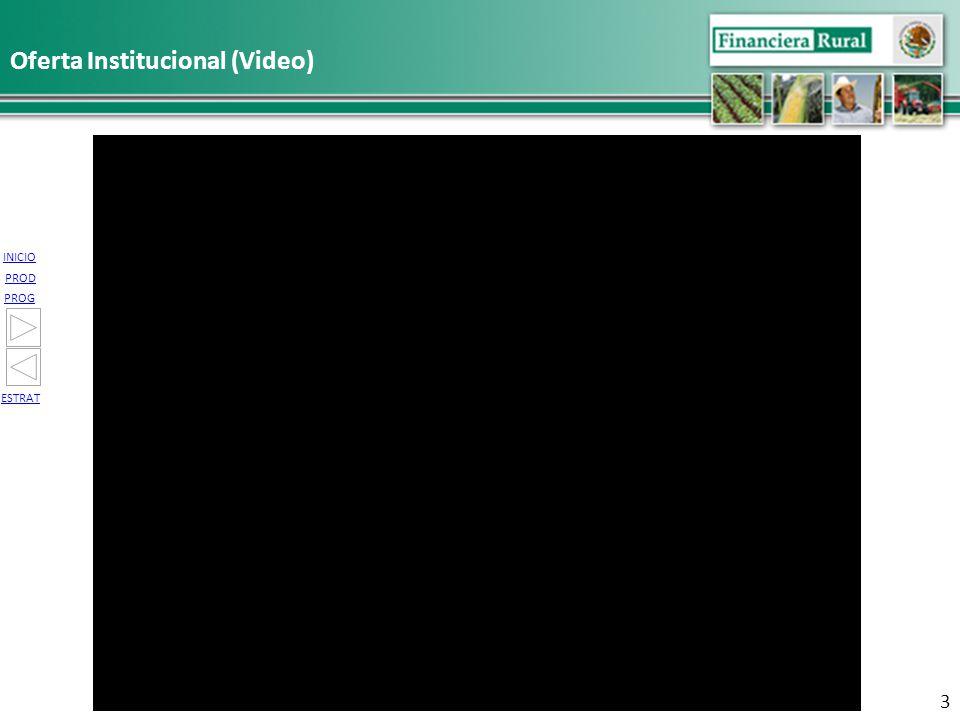 INICIO PROG PROD ESTRAT Oferta Institucional (Video) 3