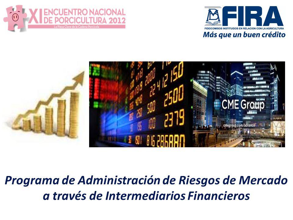 Programa de Administración de Riesgos de Mercado a través de Intermediarios Financieros