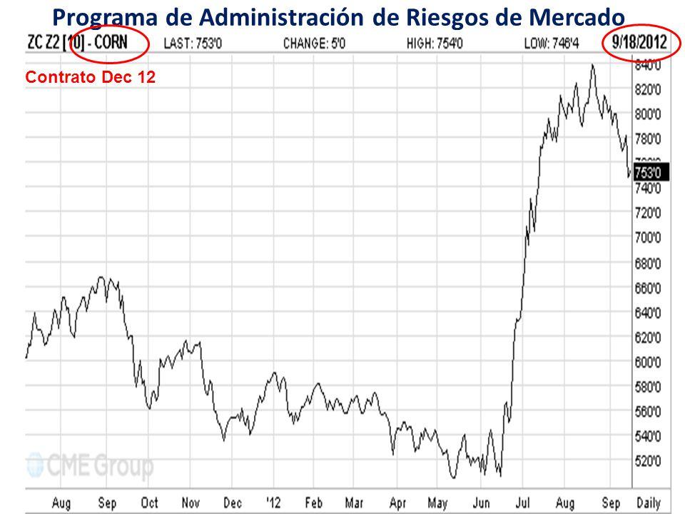 Programa de Administración de Riesgos de Mercado a través de Intermediarios Financieros Contrato Dec 12
