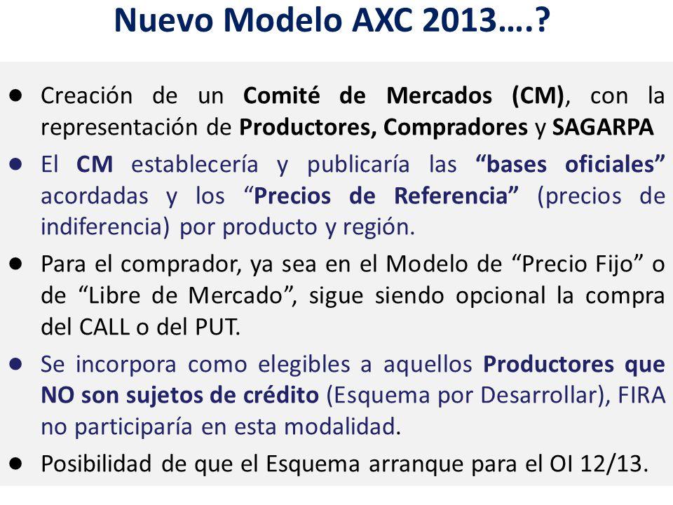Inversión Fija Nuevo Modelo AXC 2013…..