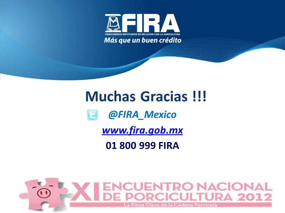 Muchas Gracias !!! @FIRA_Mexico www.fira.gob.mx 01 800 999 FIRA