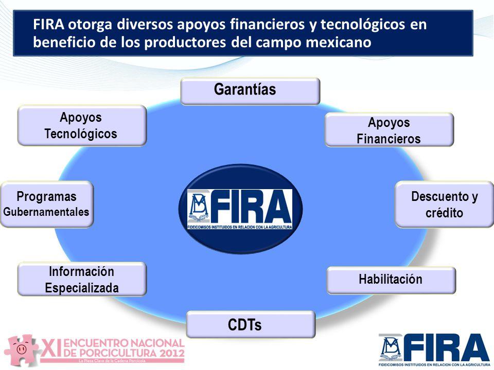 CDTs Garantías Descuento y crédito Información Especializada Habilitación Programas Gubernamentales Apoyos Tecnológicos Apoyos Financieros FIRA otorga diversos apoyos financieros y tecnológicos en beneficio de los productores del campo mexicano