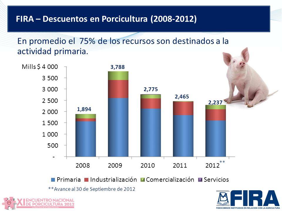 FIRA – Descuentos en Porcicultura (2008-2012) En promedio el 75% de los recursos son destinados a la actividad primaria.