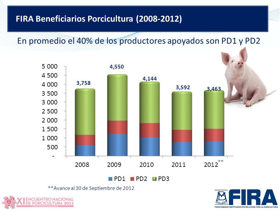 FIRA Beneficiarios Porcicultura (2008-2012) En promedio el 40% de los productores apoyados son PD1 y PD2 3,758 4,550 4,144 3,592 3,463 **Avance al 30 de Septiembre de 2012 **