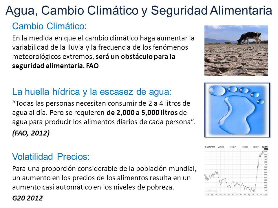 Cambio Climático: En la medida en que el cambio climático haga aumentar la variabilidad de la lluvia y la frecuencia de los fenómenos meteorológicos extremos, será un obstáculo para la seguridad alimentaria.